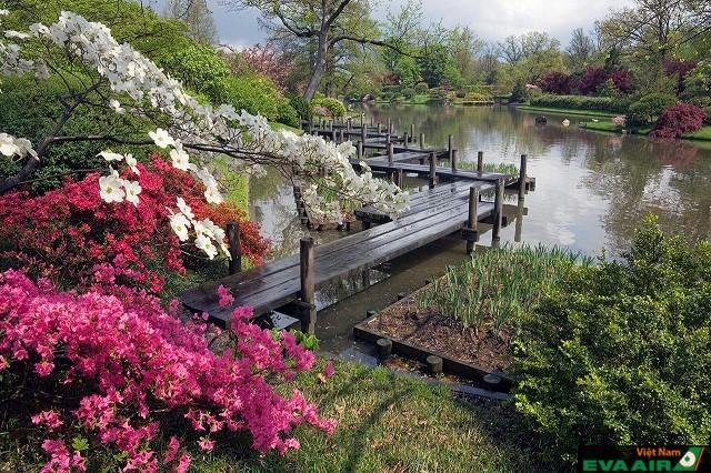 Không chỉ là nơi tuyệt vời để ngắm hoa vườn Bách thảo Missouri còn là một điểm đến tự nhiên tuyệt đẹp