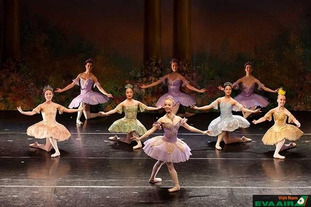 Màn trình diễn của các vũ công ba-le trong Dạ hội Opera thành Vienna